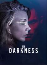 In.Darkness.2018.1080p.WEB-DL.DD5.1.H264-FGT