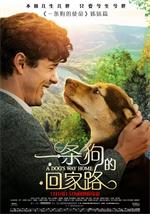一条狗的回家路A Dog's Way Home.2019.1080p.WEB-DL.H264.AAC2.0-FEWAT