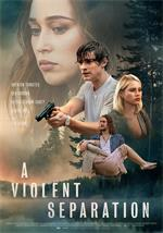 A.Violent.Separation.2019.1080p.WEB-DL.DD5.1.H264-FGT
