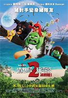 The.Angry.Birds.Movie.2.2019.1080p.WEB-DL.AC3.H264-CMRG