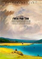 野梨树The.Wild.Pear.Tree.2018.1080p.BluRay.x264