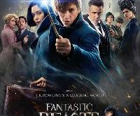 Fantastic.Beasts.and.Where.to.Find.Them.2016.1080p.KORSUB.HDRip.x264.AAC2.0-STUTTERSHIT